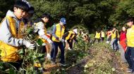 청소년자원봉사프로그램_농촌일손돕기